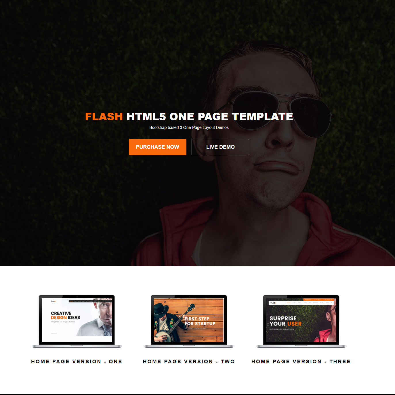 CSS3 Bootstrap Flash Templates